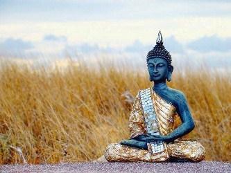 Nghiên Cứu Phật Giáo Hiểu Biết Gì Về Thế Giới?