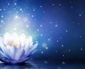 Những Điều Tôi Nhận Được Từ Phật Pháp