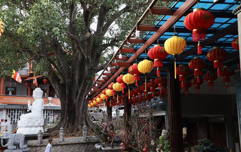 Phật giáo Buôn Ma Thuột và Công tác chuẩn bị Tết Tân Sửu 2021