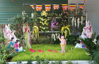 15 vườn Lâm Tỳ Ni được thiết lập tại tư gia phật tử xã EaMnang, huyện CưMgar.