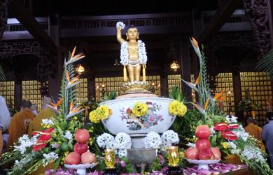 VIDEO : Khai mạc tuần Đại Lễ Phật Đản tại thành phố Buôn Ma Thuột