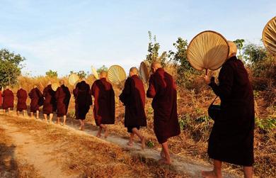 Một sáng ở thiền viện Maha Vihara Forest (Myanmar)