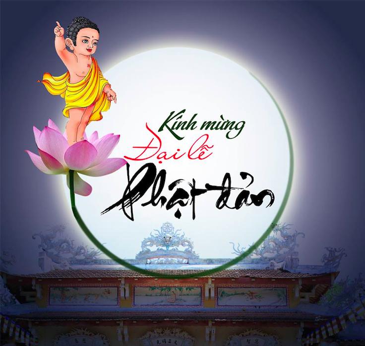 Tổng hợp hoạt động Kính Mừng Phật Đản PL.2562